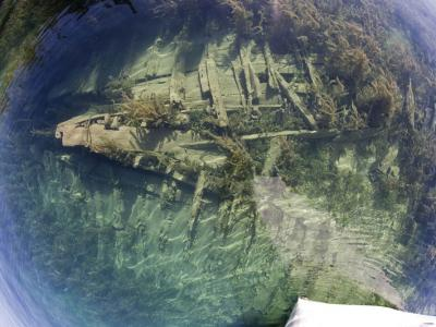 Glass-Bottom Tour Shipwrecks Tobermory